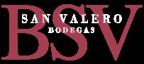 Logotipo-BSV-Neg
