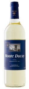 Monte Ducay blanco